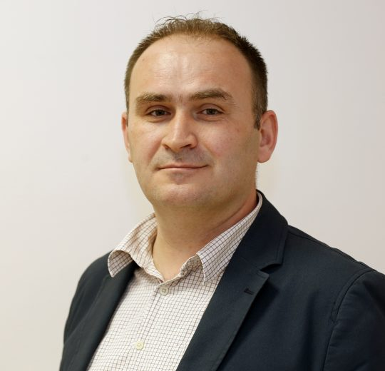 prof. dr. sc. Ivica Brizić